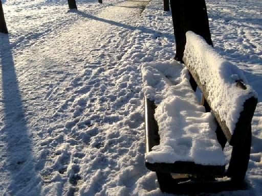 winter-2012-056